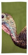 Wild Turkey Portrait Beach Towel