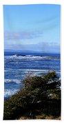 Wild Waves Beach Towel