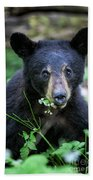 Wildflower Bear Beach Towel