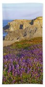 Wildflowers And Rock Formations Along Beach Towel