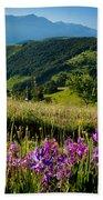 Wildflowers Umbria Beach Towel