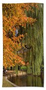 Willow In The Garden Beach Towel