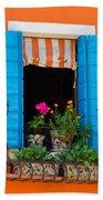 Window Plants Beach Towel