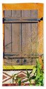 Window To Africa Beach Towel