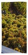 Wine Harvest Beach Towel by Garry Gay