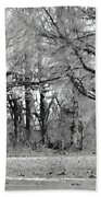 Winter At The Edge Of The Woods Beach Towel