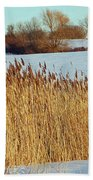 Winter Breeze Beach Towel by Aimee L Maher Photography and Art Visit ALMGallerydotcom
