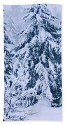 Winter Coat Beach Towel by Aimelle
