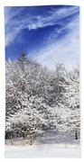 Winter Forest Covered With Snow Beach Towel