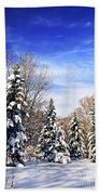 Winter Forest Under Snow Beach Towel by Elena Elisseeva