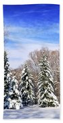 Winter Forest With Snow Beach Towel