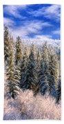 Winter In The Rockies Beach Towel