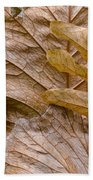 Autumn Leaves Of Gold Beach Towel