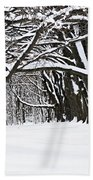 Winter Park With Snow Covered Trees Beach Towel by Elena Elisseeva
