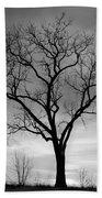 Winter Tree Silhouette Beach Towel