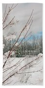 Winter Woods Beach Towel by Joann Vitali