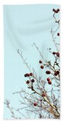 Winter's End Beach Towel