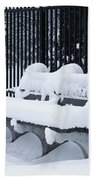 Winter's Quiescence Beach Towel by Dale Kincaid