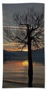 Wintertree In The Evening Beach Towel
