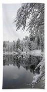 Wintery Reflections Beach Sheet