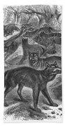Wolves Beach Towel