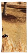 Wood Duck In Fflight Beach Towel