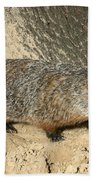 Woodchuck Beach Towel