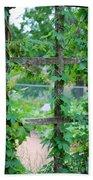 Wooden Trellis And Vines Beach Sheet