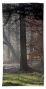 Woods - Dirt Road Photo - The Quiet Place Beach Towel