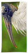 Woodstork Portrait Beach Towel