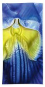 Yellow And Blue Beach Towel