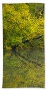 Yellow Autumn Beach Sheet