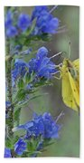 Yellow Cabbage Butterfly Beach Towel