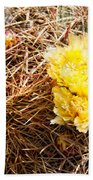 Yellow Cactus Flowers Beach Towel