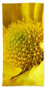 Yellow Chrysanthemum Beach Towel