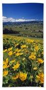 Yellow Flowers Blooming, Hood River Beach Towel