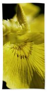 Yellow Iris Beach Towel