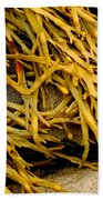 Yellow Kelp Beach Towel