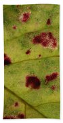 Yellow Leaf With Red Spots 2 Beach Towel