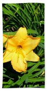 Yellow Lily  Beach Towel
