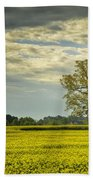 Yellow Meadow Beach Towel