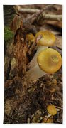 Yellow Mushrooms Beach Towel