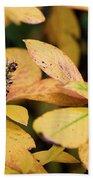 Yellow Petal Leaf With Sprig Beach Towel