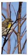 Yellow-rumped Warbler - Placid Beach Towel