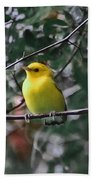 Yellow Songbird Beach Towel
