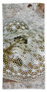 Yellow Stingray In Caribbean Sea Beach Towel
