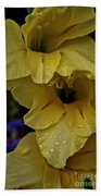 Yellow Trio Beach Towel by Susan Herber