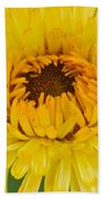 Yellow Zinnia 9494 4286 Beach Towel
