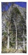 Yosemite Reflection Beach Towel