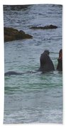 Young Elephant Seals Sparring Beach Towel